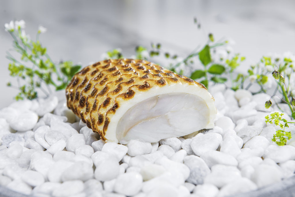 Piece of turbot on a plate