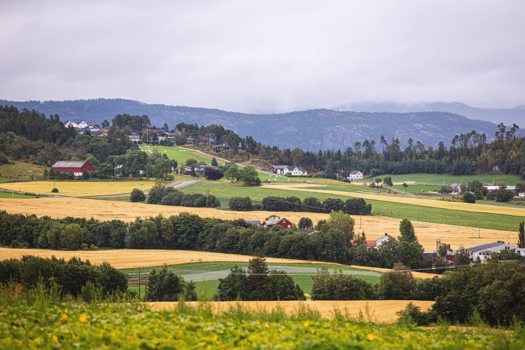 a field view in Frosta, Norway