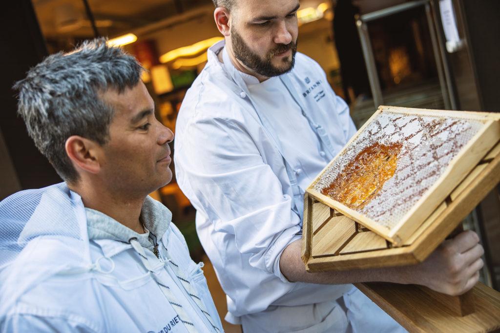 Britannia Honey production
